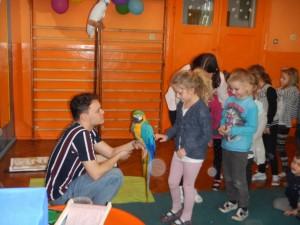 Show Podróżnika Trepki z papugami